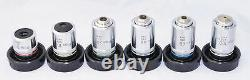 Nikon M-Plan Microscope Objective Lens Set 5/10/20/40/60/100