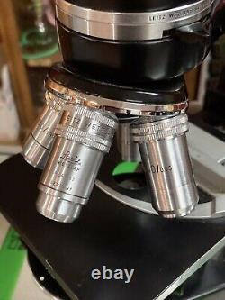 Microscope Leitz Wetzlar Vintage Avec Quatre Objectifs